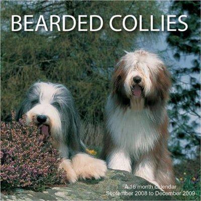 **BEARDED COLLIES- (2009)