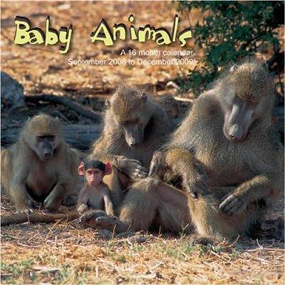 BEBES ANIMAUX - (2009)