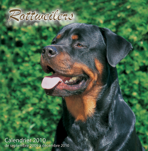 ROTTWEILERS - (2010)