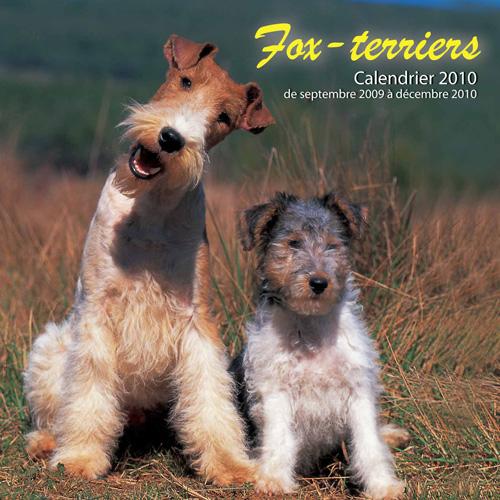 FOX-TERRIERS - (2010)