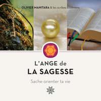 ANGE DE LA SAGESSE, SACHE ORIENTER TA VIE (L')