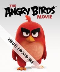 ANGRY BIRDS - CHERCHE ET TROUVE