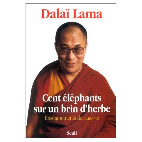 CENT ELEPHANTS SUR UN BRIN D'HERBE. ENSEIGNEMENTS
