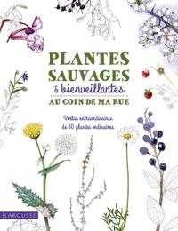 PLANTES SAUVAGES & BIENVEILLANTES AU COIN DE MA RUE