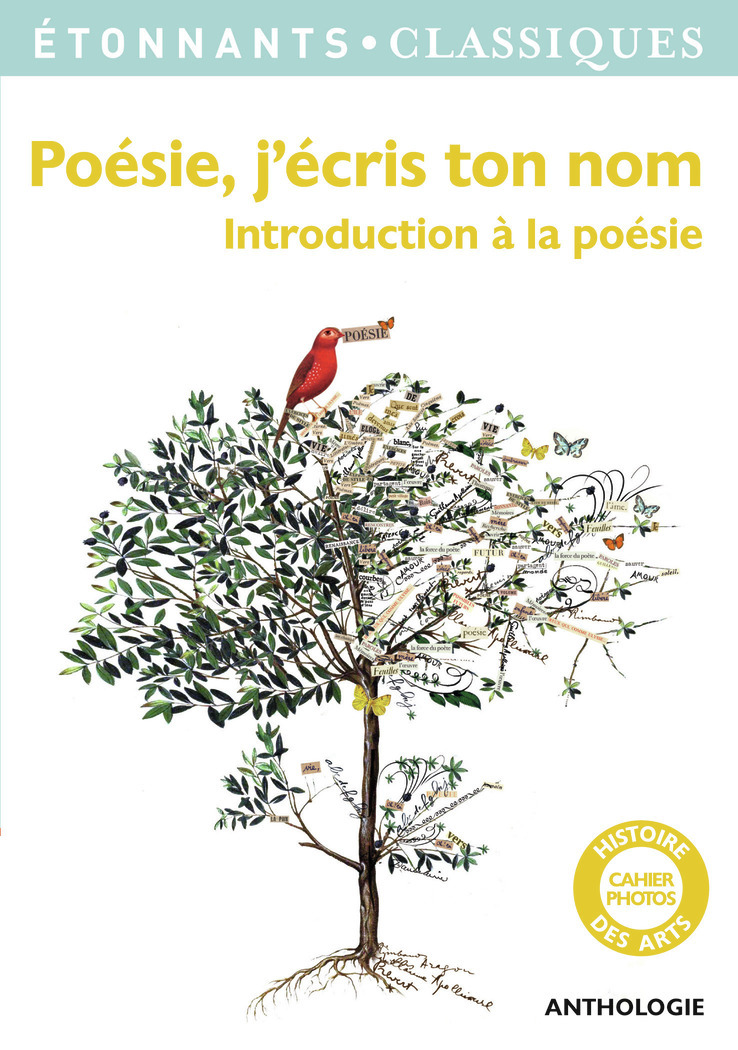 POESIE, J'ECRIS TON NOM - INTRODUCTION A LA POESIE
