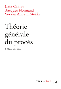 THEORIE GENERALE DU PROCES