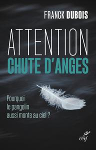 ATTENTION CHUTE D'ANGES - POURQUOI LE PANGOLIN AUSSI MONTE AU CIEL ?