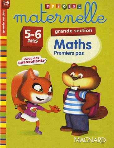 2011 MATHS GS