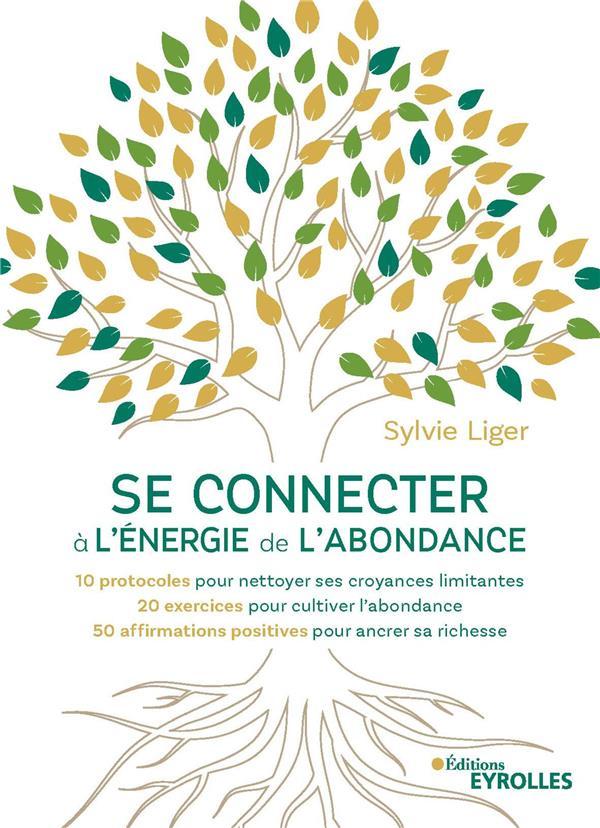 SE CONNECTER A L'ENERGIE DE L'ABONDANCE - 10 PROTOCOLES POUR NETTOYER SES CROYANCES