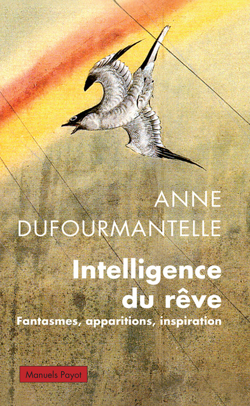 INTELLIGENCE DU REVE