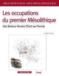 RA N 8 - LES OCCUPATIONS DU PREMIER MESOLITHIQUE DES BASSES VEUVES (PONT-SUR-YONNE)