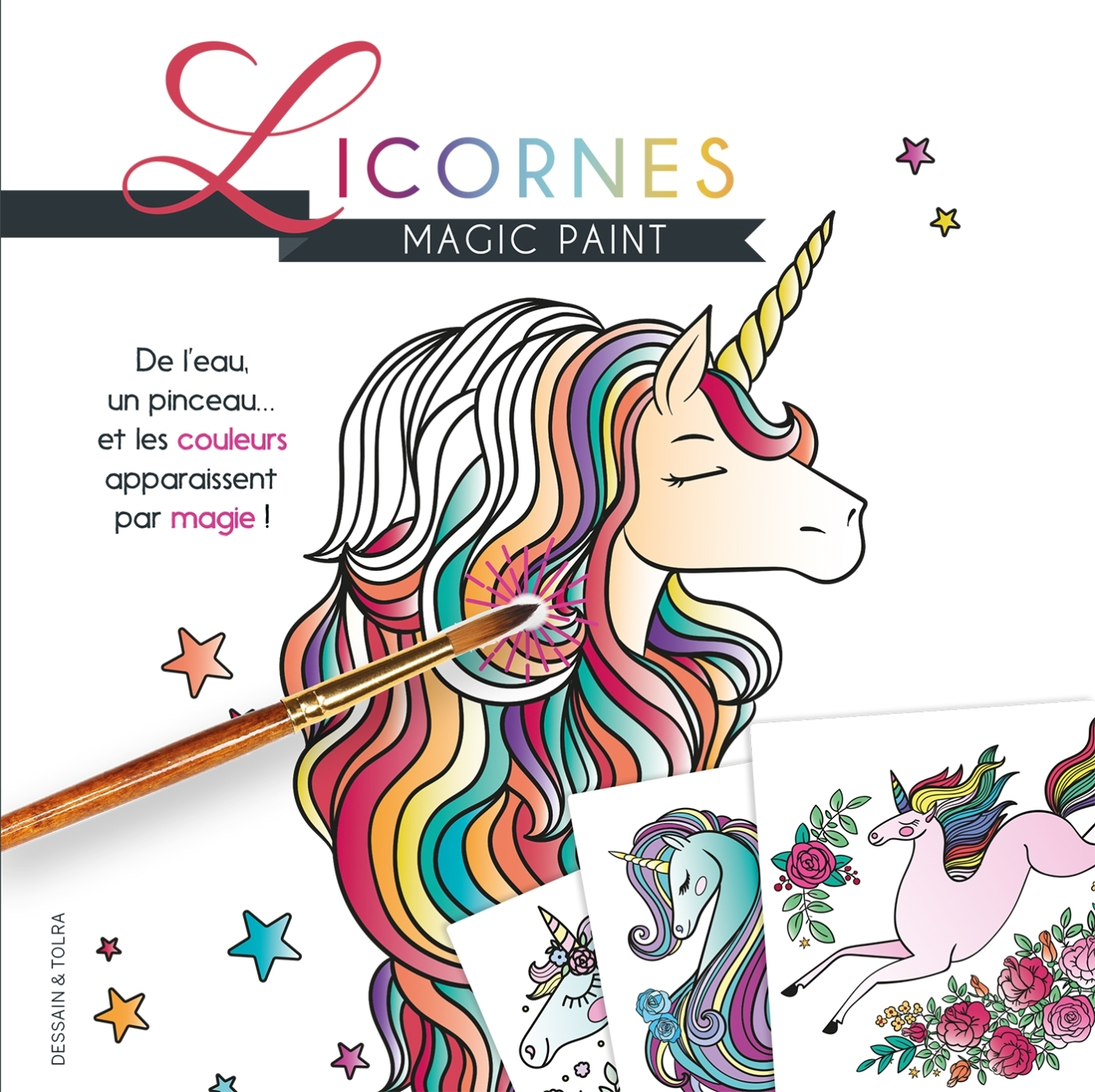 MAGIC PAINT LICORNES
