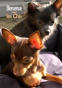 CABOTEENAGE - T01 - BIENVENUE CHEZ LES CHIS - JANA ET JOY