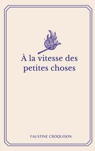 A LA VITESSE DES PETITES CHOSES
