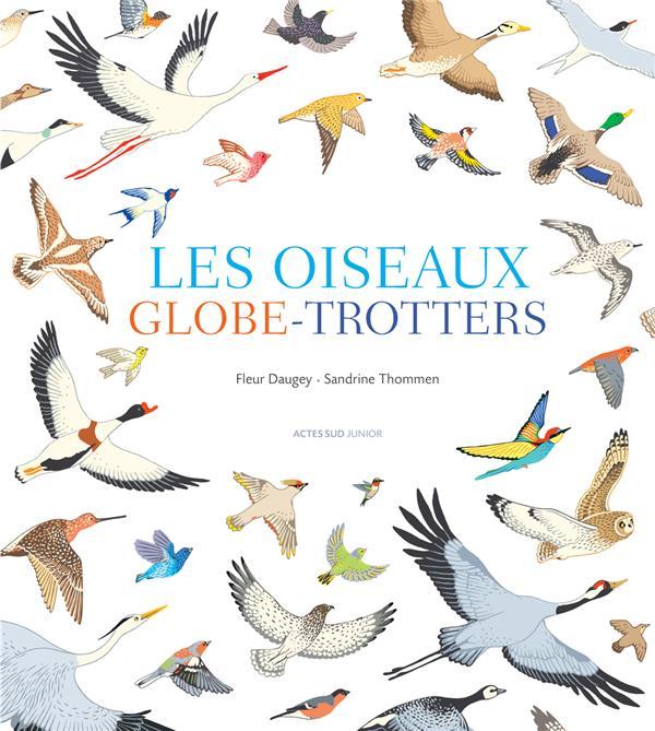 Les oiseaux globe-trotters