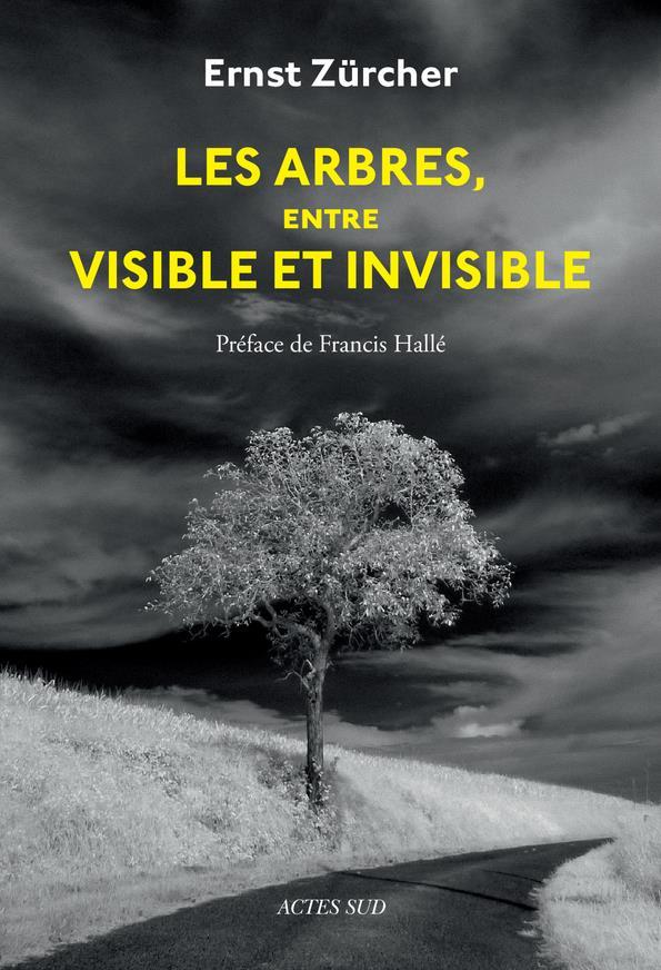 LES ARBRES, ENTRE VISIBLE ET INVISIBLE - S'ETONNER, COMPRENDRE, AGIR