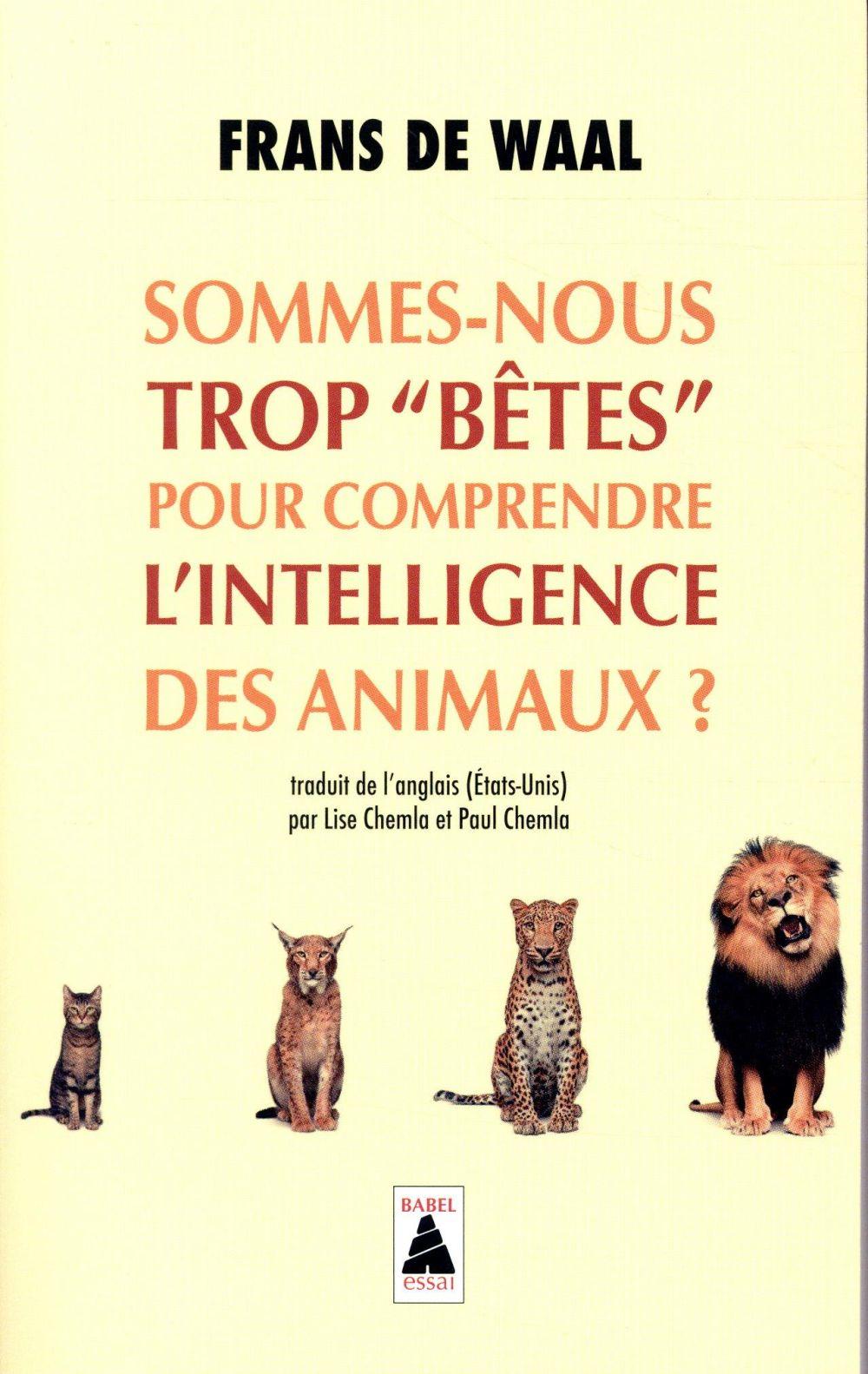 """Sommes-nous trop """"betes"""" pour comprendre l'intelligence des animaux ? (babel)"""