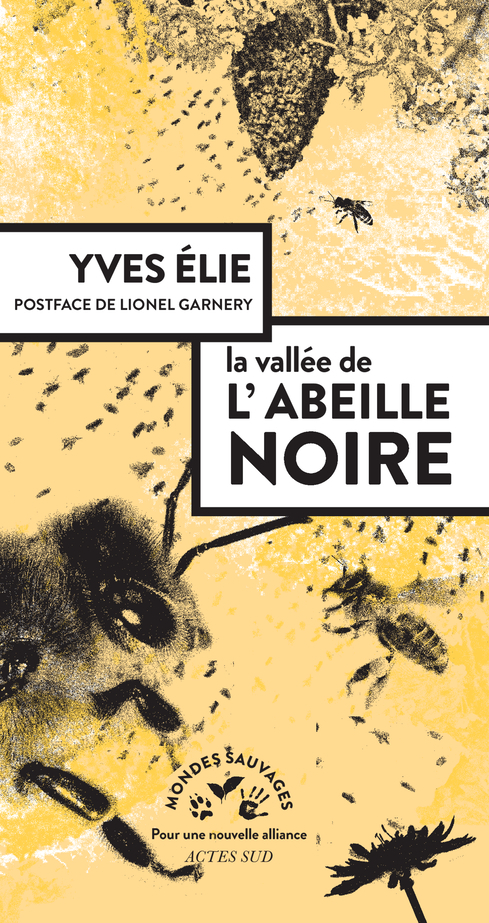 LA VALLEE DE L'ABEILLE NOIRE
