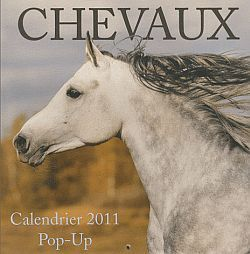 CALENDRIER POP UP CHEVAUX 2011