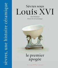SEVRES SOUS LOUIS XVI, LE PREMIER APOGEE