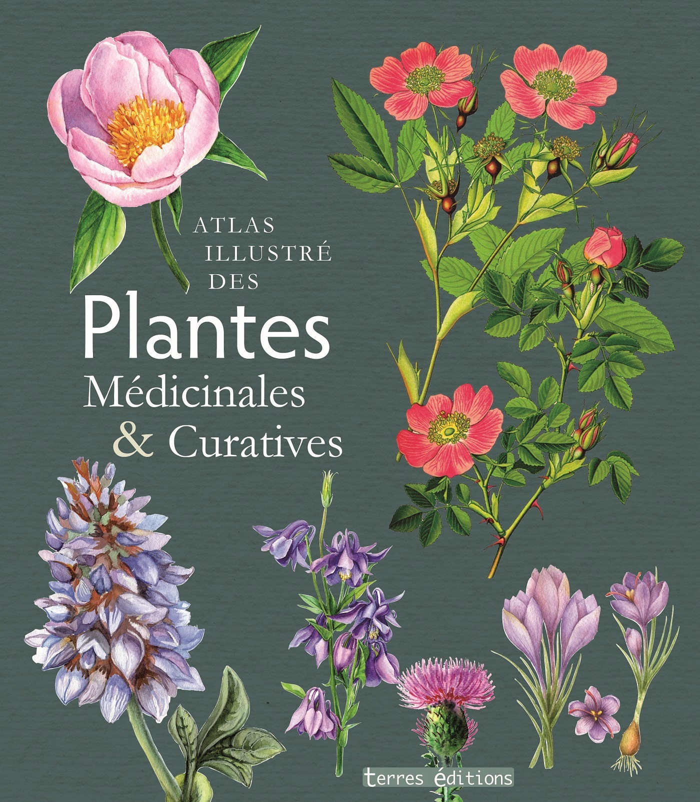 ATLAS ILLUSTRE DES PLANTES MEDICINALES ET CURATIVES