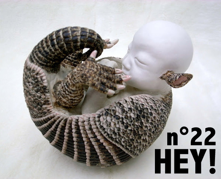 HEY ! N22