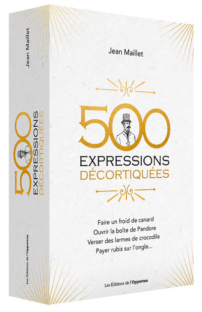 500 EXPRESSIONS DECORTIQUEES