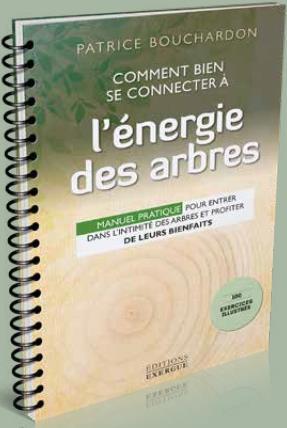 COMMENT BIEN SE CONNECTER A L'ENERGIE DES ARBRES