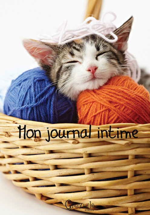 **MON JOURNAL INTIME CHAT
