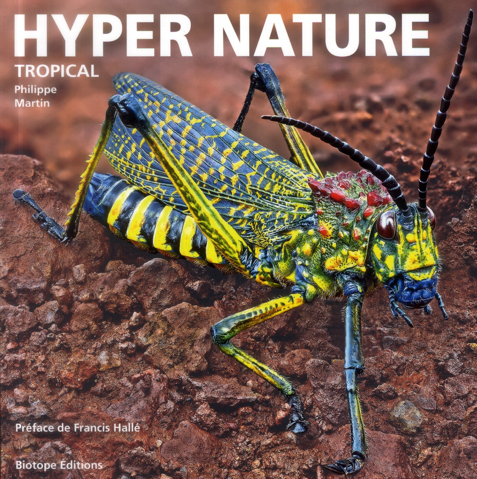 HYPER NATURE TROPICAL