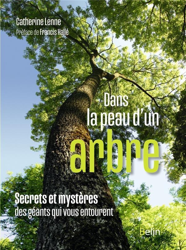 DANS LA PEAU D'UN ARBRE - SECRETS ET MYSTERES DES GEANTS QUI VOUS ENTOURENT