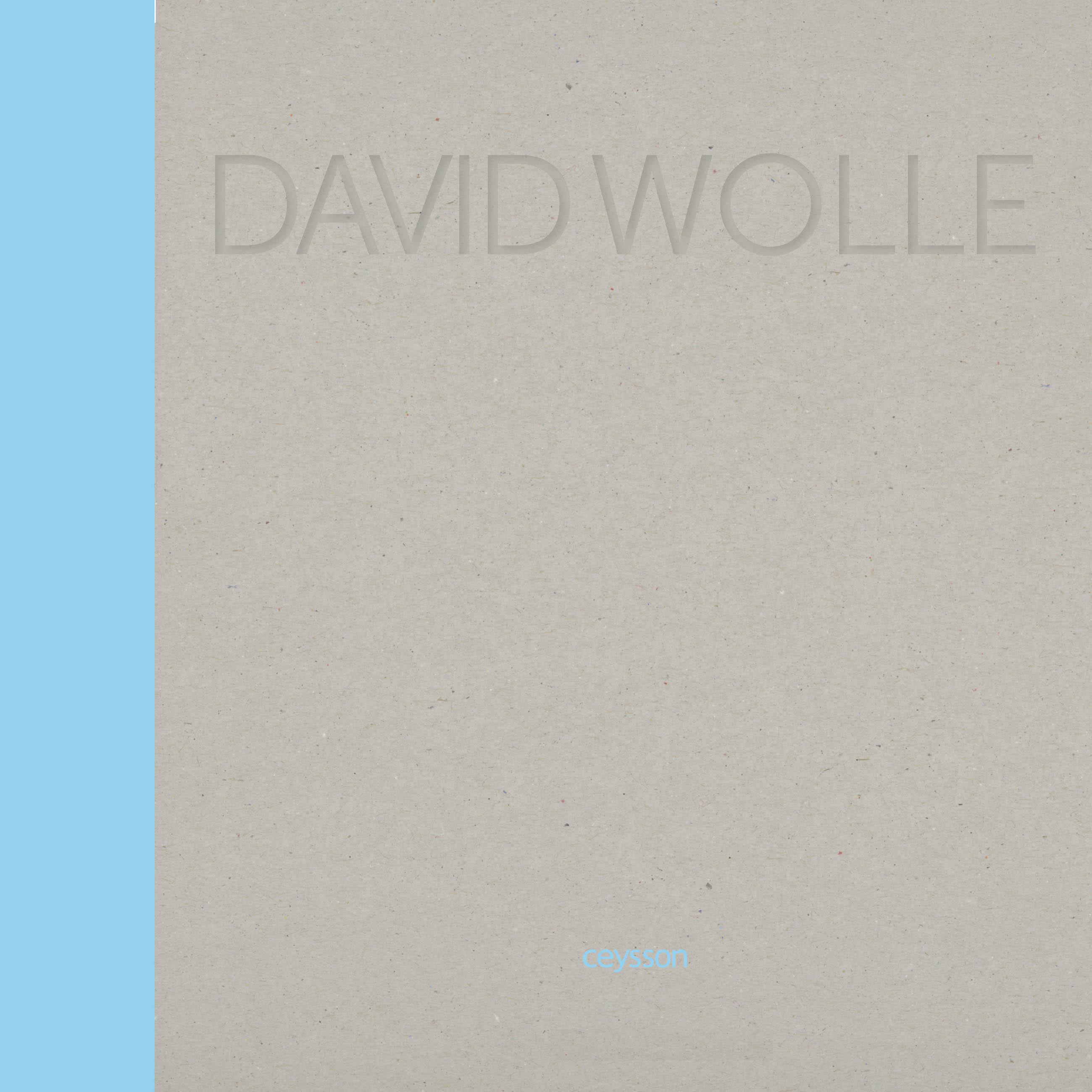 DAVID WOLLE