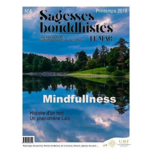 SAGESSES BOUDDHISTES - LA PLEINE CONSCIENCE - N 6