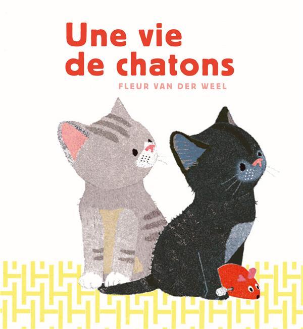 Une vie de chatons