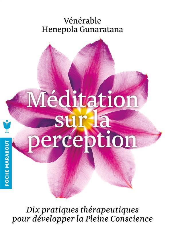 MEDITATION SUR LA PERCEPTION - DIX PRATIQUES THERAPEUTIQUES POUR DEVELOPPER LA PLEINE CONSCIENCE