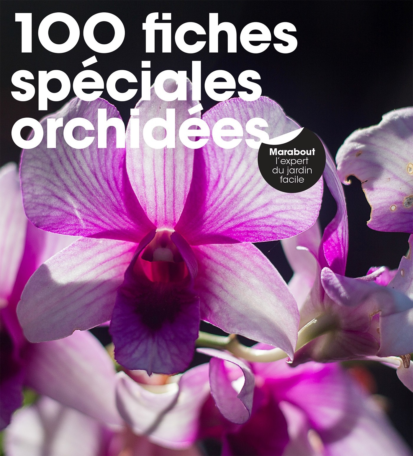 100 FICHES SPECIALES ORCHIDEES