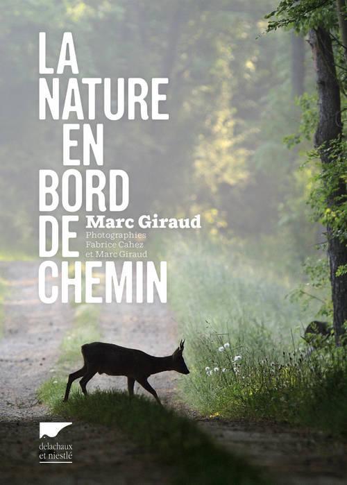 LA NATURE EN BORD DE CHEMIN