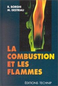 LA COMBUSTION ET LES FLAMMES