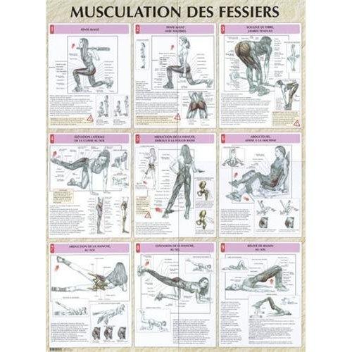 MUSCULATION DES FESSIERS PLANCHE PLASTIFIEE