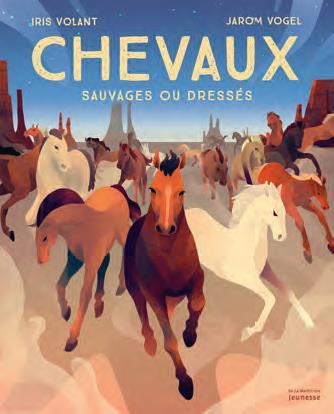 CHEVAUX - SAUVAGES OU DRESSES