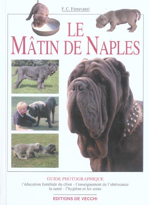 MATIN DE NAPLES