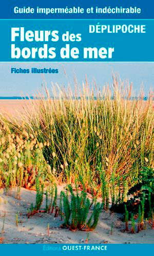 FLEURS DU BORD DE MER - DEPLIPOCHE