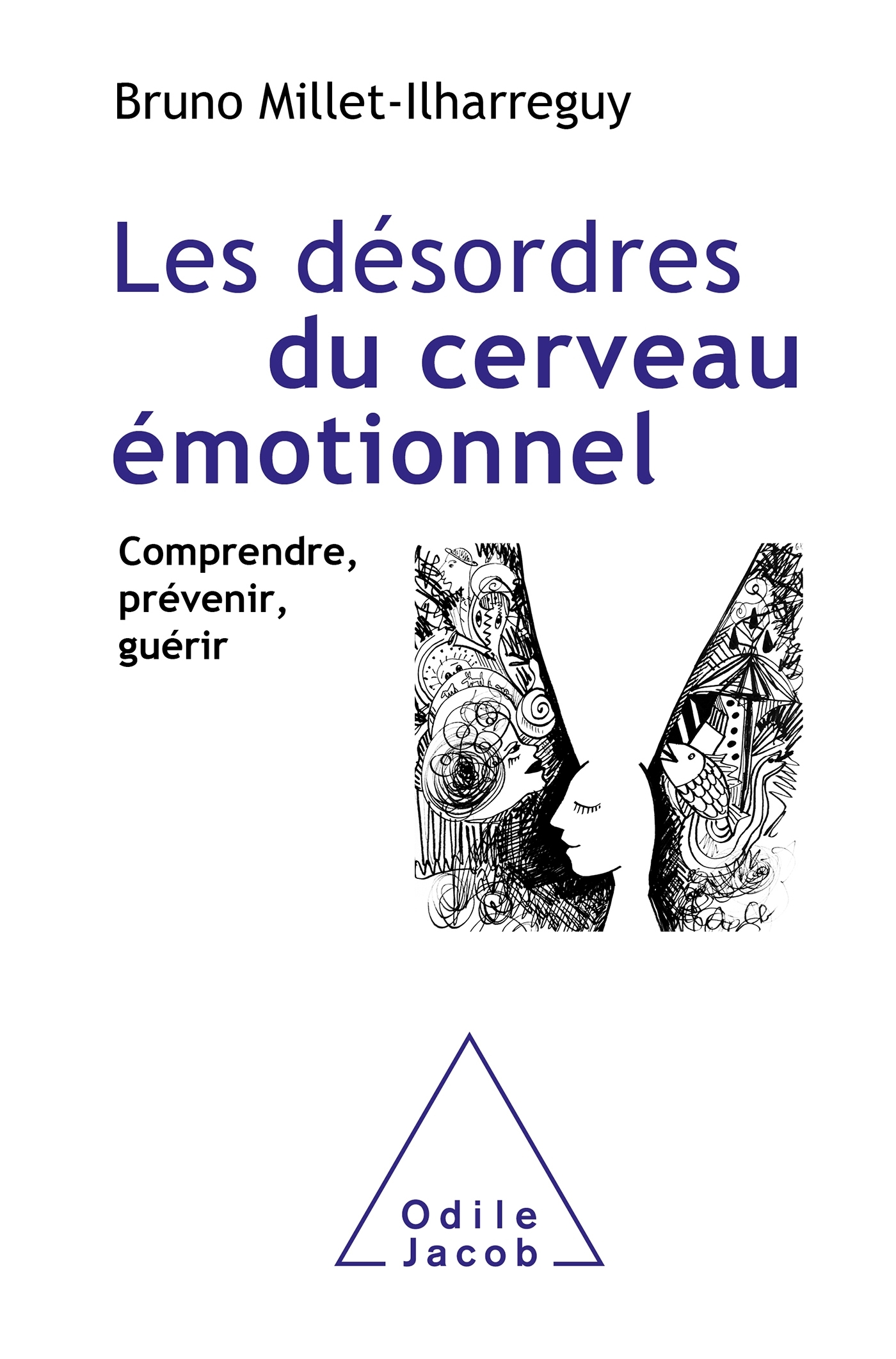 LES DESORDRES DU CERVEAU EMOTIONNEL - COMPRENDRE, PREVENIR, GUERIR