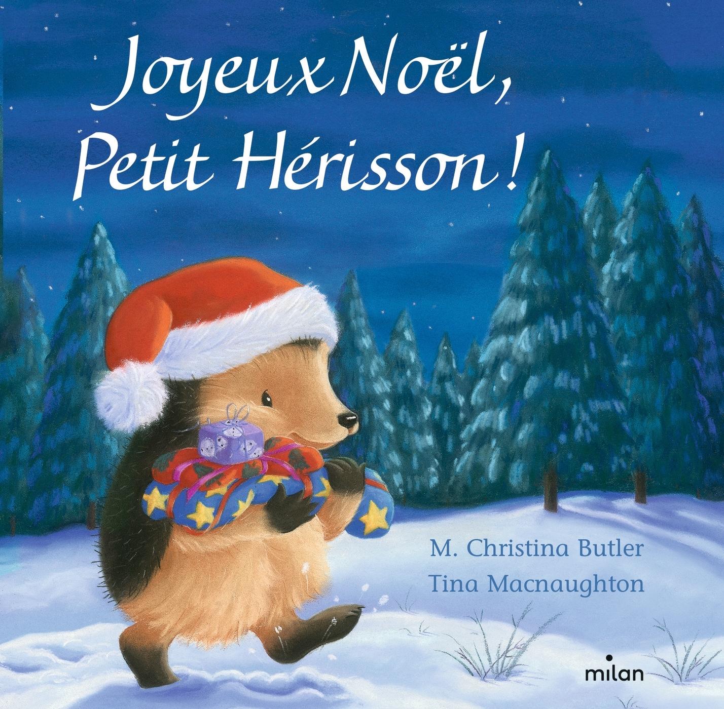 JOYEUX NOEL, PETIT HERISSON ! (TOUT-CARTON)