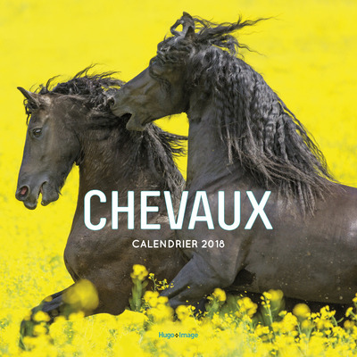 CALENDRIER MURAL CHEVAUX 2018