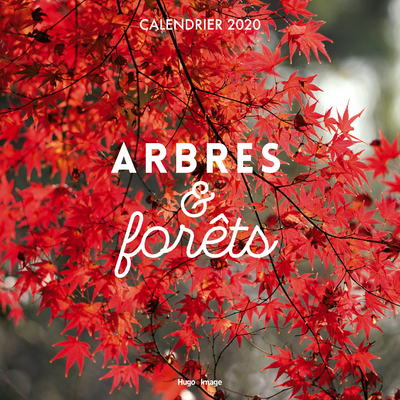 CALENDRIER MURAL ARBRES & FORETS 2020