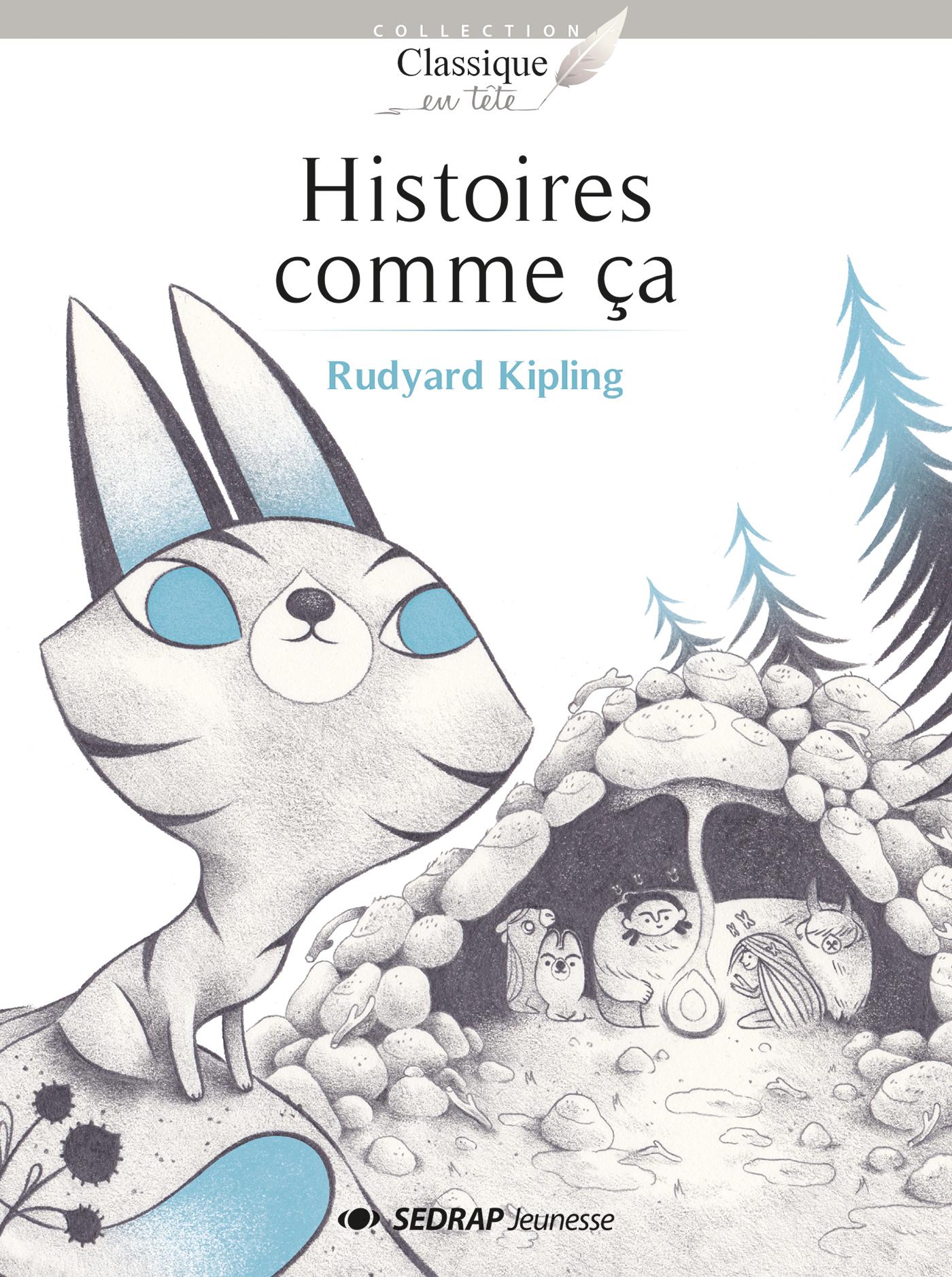 HISTOIRES COMME CA - 15 ROMANS + FICHIER