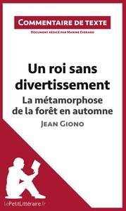 COMMENTAIRE COMPOSE UN ROI SANS DIVERTISSEMENT DE JEAN GIONO LA METAMORPHOSE DE