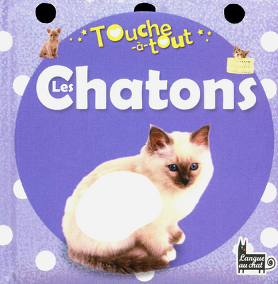 TOUCHE-A-TOUT LES CHATONS
