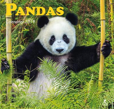 PANDAS - CALENDRIER 2019